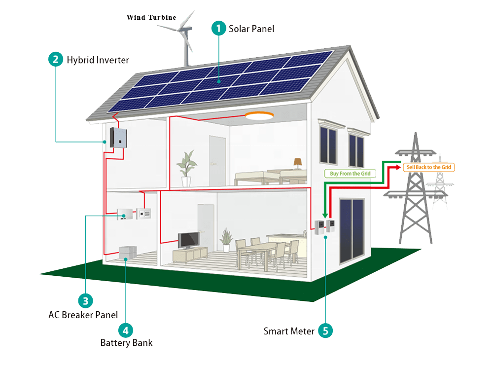 transplant house solar panals
